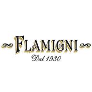Flamigni-Logo